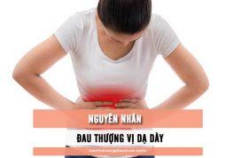 nguyên nhân gây đau thượng vị dạ dày