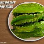 cách chữa bệnh đau dạ dày bằng đậu rồng