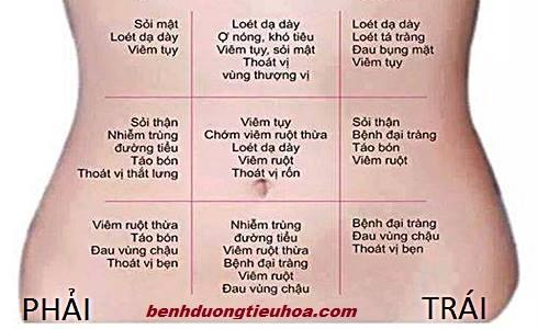 chan-doan-benh-qua-vi-tri-dau-da-day(2)