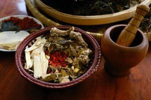 Bài thuốc chữa dạ dày dòng họ Nguyễn Thu.