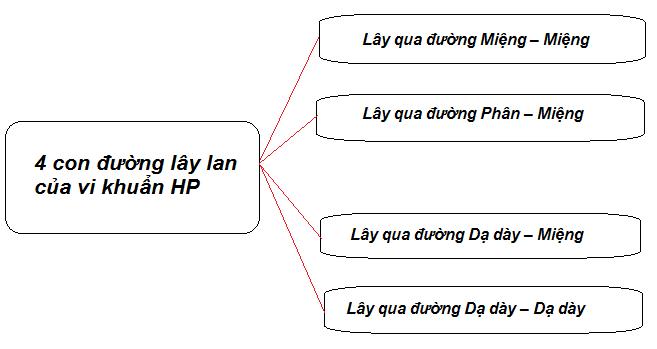 vi-khuan-hp-da-day-co-lay-qua-tiep-xuc-uong-khong1