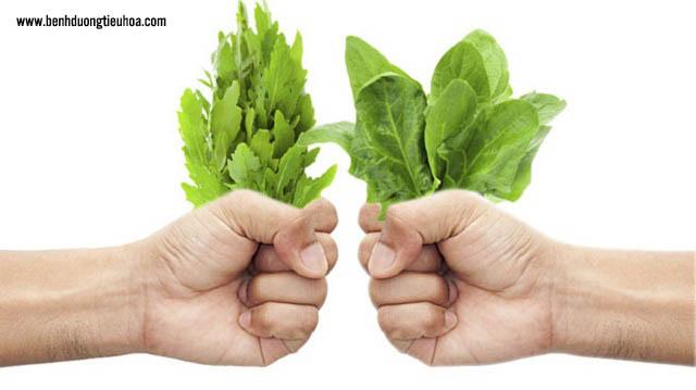 Bệnh nhân đau dạ dày nên ăn nhiều rau xanh