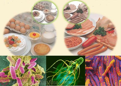 Thực phẩm bẩn nguyên nhân gây viêm đại tràng co thắt