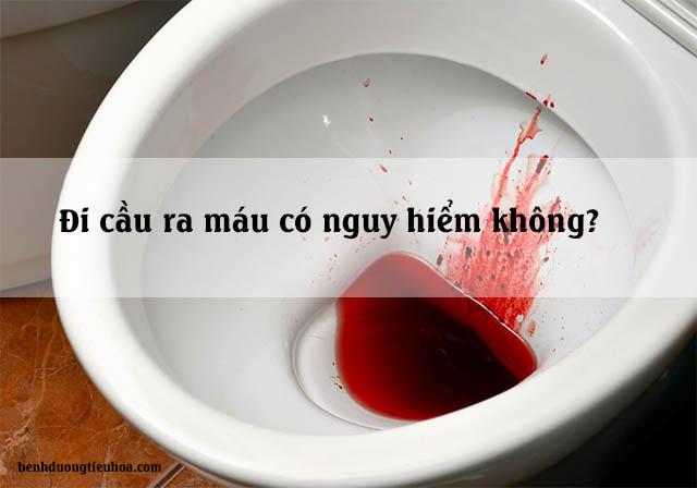 Đi cầu ra máu tươi có nguy hiểm không