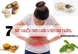 Chữa trị bệnh viêm đại tràng bằng cây thuốc nam