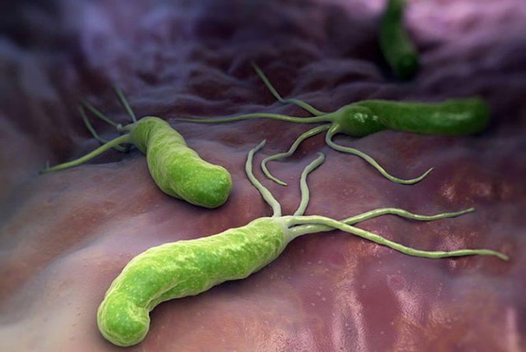 Phác đồ điều trị khuẩn HP trong dạ dày CHUYÊN BIỆT hiệu quả tuyệt đối