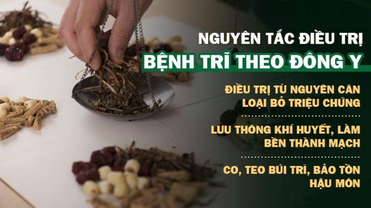 Điều trị trĩ ngoại theo Đông y để loại bỏ nguyên nhân gốc rễ gây ra bệnh